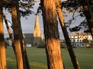 [Sunset through the trees at Silloth]