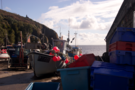 cadgwith.png